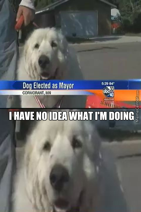 Welp, I'd Vote For Him