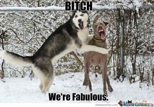We're Fabulous!