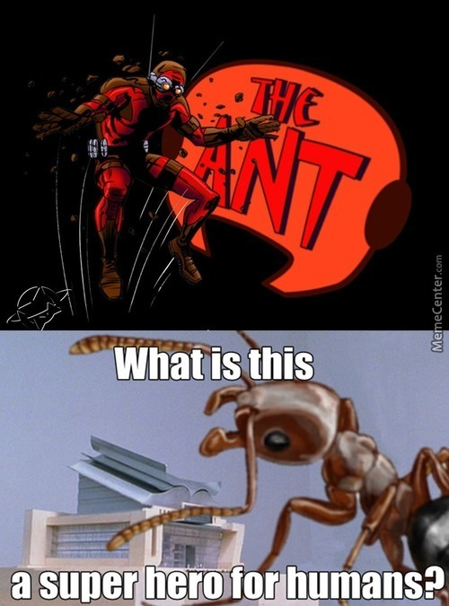 What's Next, Some Man Of Ants?