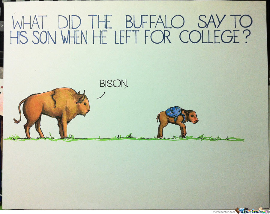 What Did The Buffalo Say...