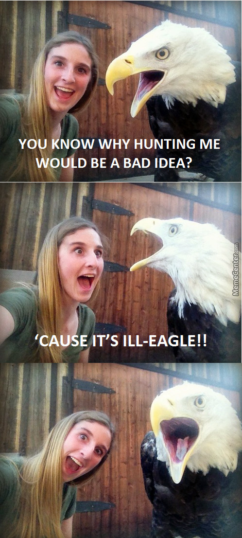 What Do You Call A Girl Talking To An Eagle? I Fucking Maniac.