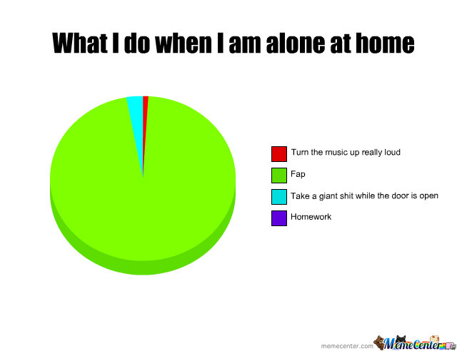 a day when i was alone at home essay