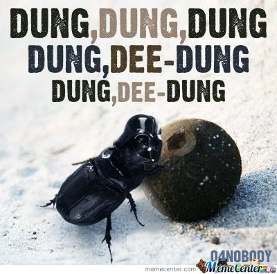 What If Darth Vader Was A Dung-Beetle?