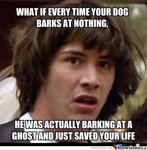 What If Every Time Your Dog Barks At Nothing