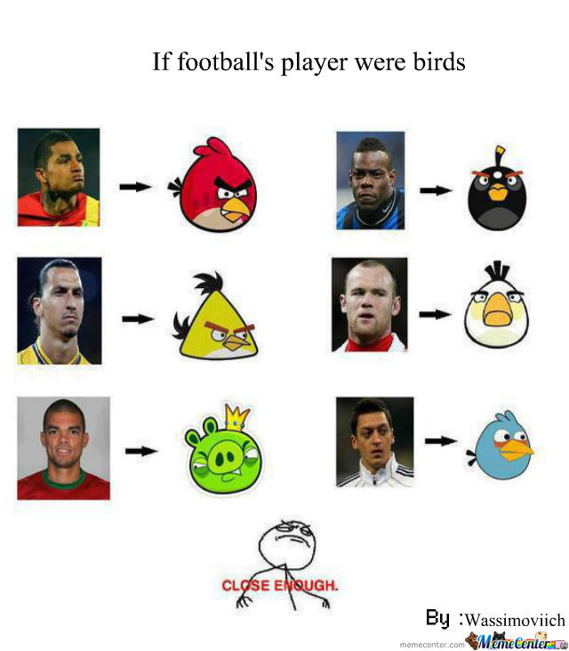 What If Football's Player Were Birds