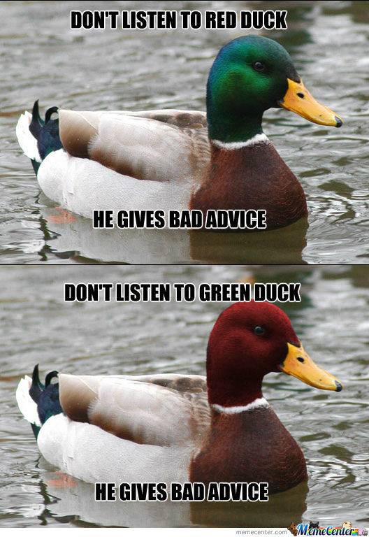 What Is The Difference Between A Duck?