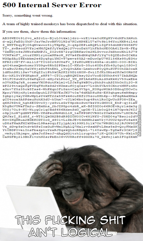 What Monkey Could Possibly Understand Such Algorithms?