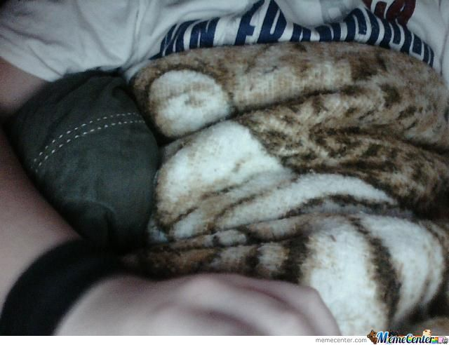 What My Blanket Looked Like While I Was Surfing The Internet