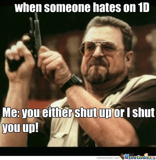 When Someone Hates On 1D