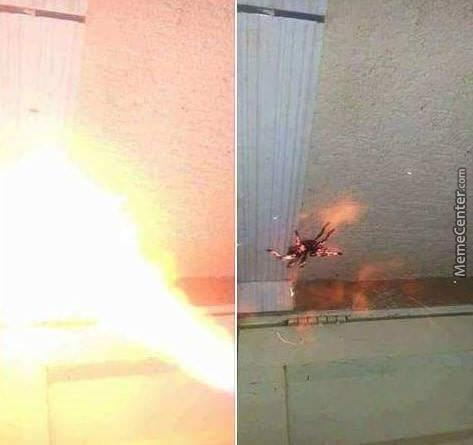 When You're Trying To Use Fire To Kill A Spider But It Has High Fire Resist