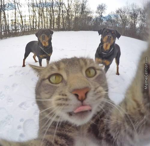 When You Take Your Selfie With Crew