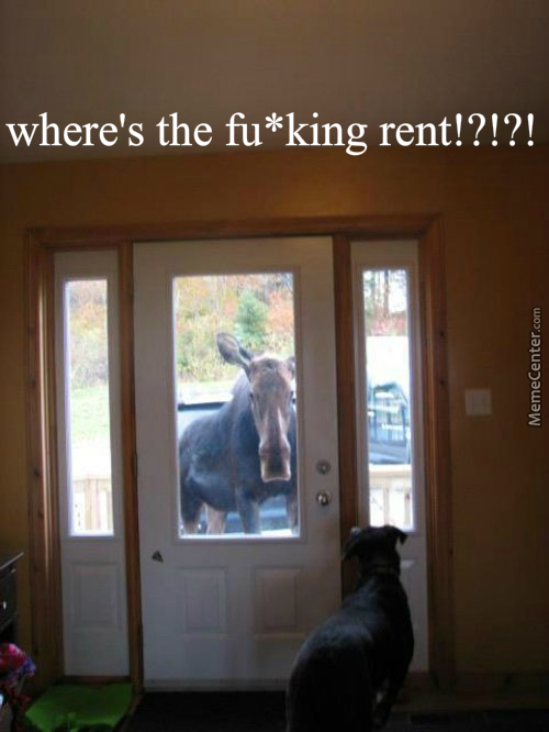 Where's The Fu*king Rent Bit*hhhhh