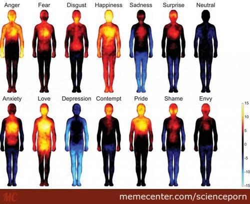 Where Your Body Feels Emotion