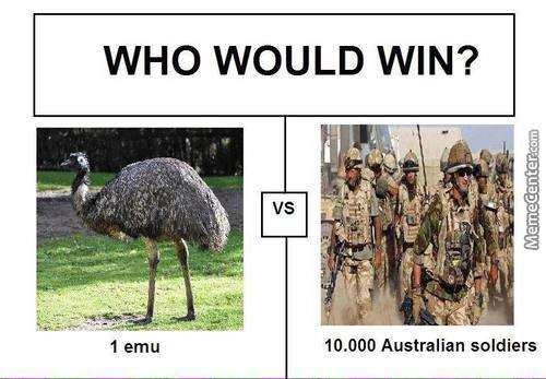 Who Do You Think Would Win?