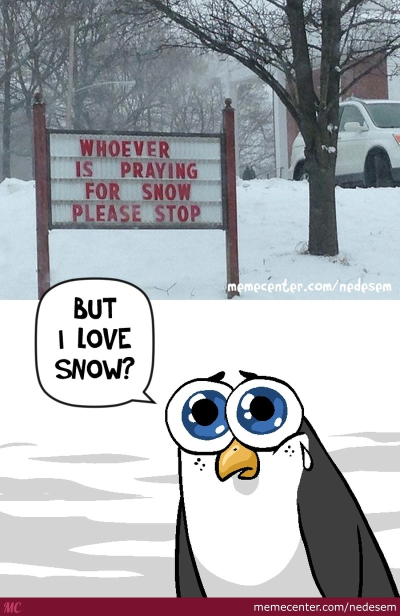 Who Doesn't Like Snow?