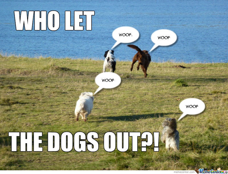 who let the fucking dogs out