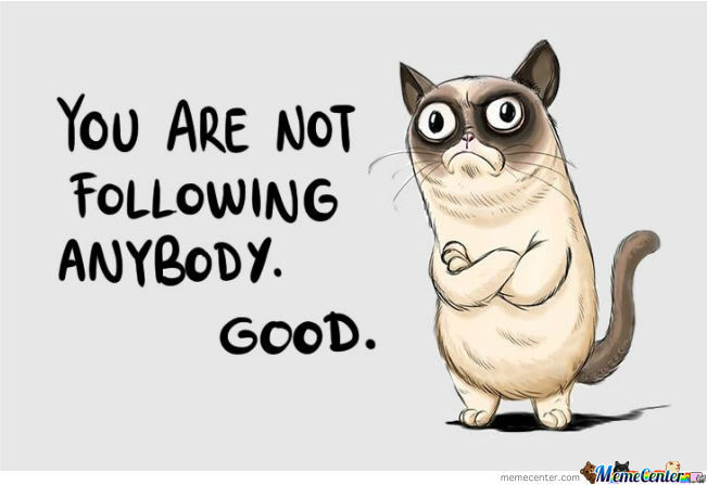 Why I Don`t Follow Anybody? Because I Got Approved By Grumpy Cat .
