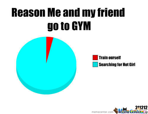 Why I Go To Gym