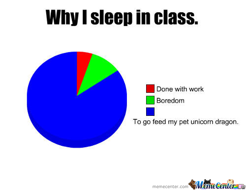 Why I Sleep In Class...