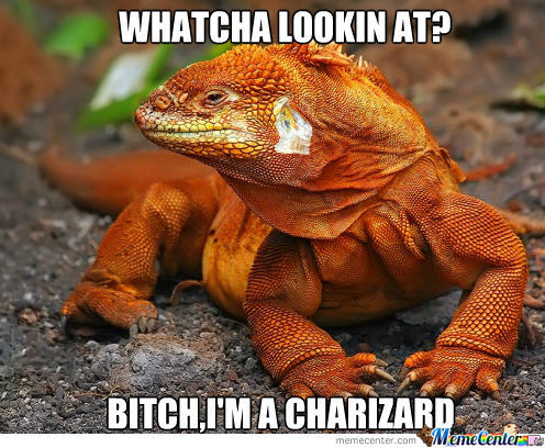 Wild Charizard Appeared