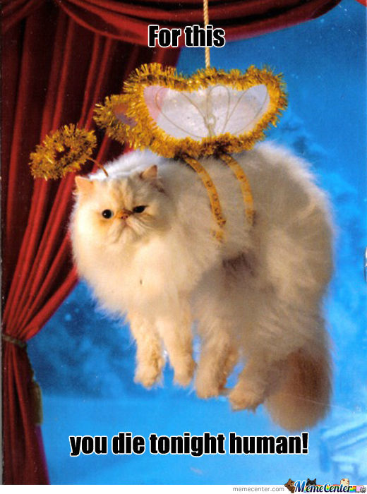 Winged Cat