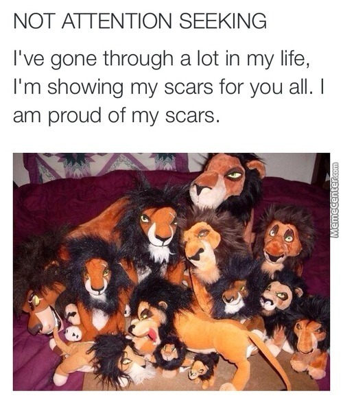 Woah That A Lot Of Scars