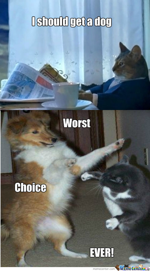 Worst Choice Ever!