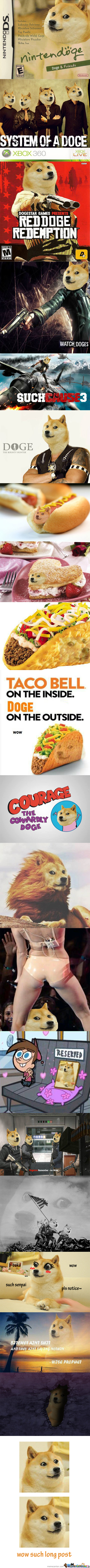 Wow Such Compilation