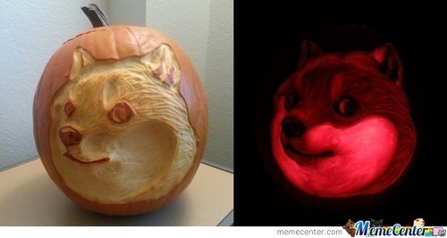 Wow, Such Pumpkin