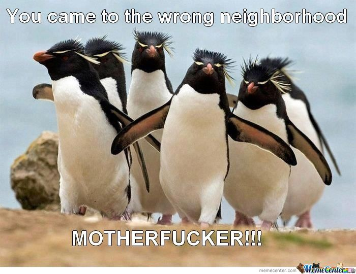Wrong Neighborhood M******