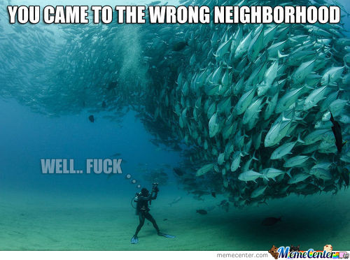 Wrong Neighborhood Underwater