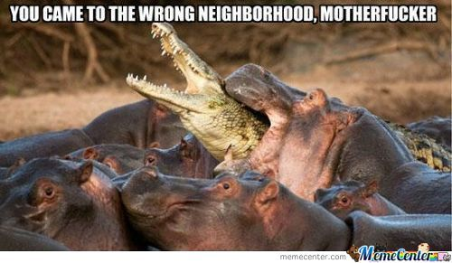 Wrong Neighbourhood