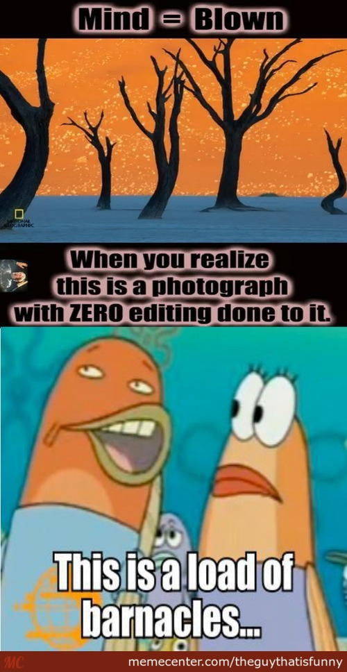 "Yea ""zero"" Editing I'm Sure."
