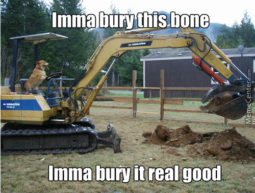 Yeah Doge Bury That Bone