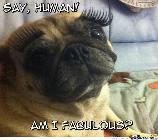 Yes! Yes, You Are Fabulous!