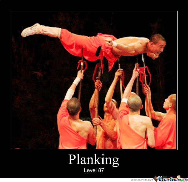 Yo Dawg, I Heard You Like To Plank