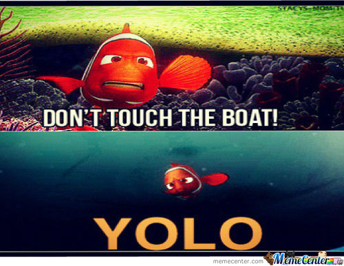 Funny Yolo Meme : Yolo memes best collection of funny pictures