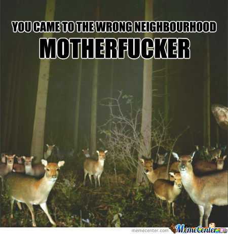 You Came To The Wrong Neighbourhood