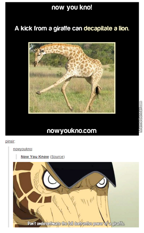 You F*ck With The Wrong Giraffe