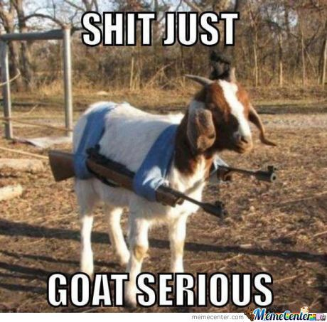 You Goat-A Love Them Puns