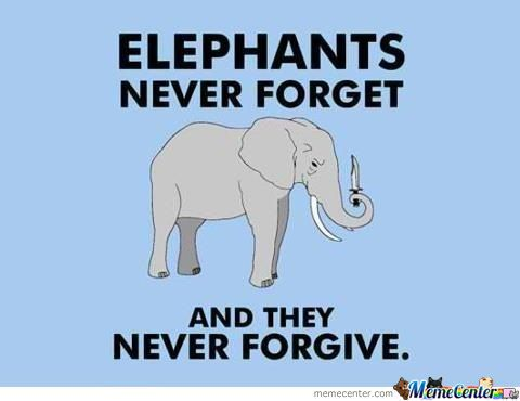 You Have Been Warned, Elephants Have A Lasting Memory