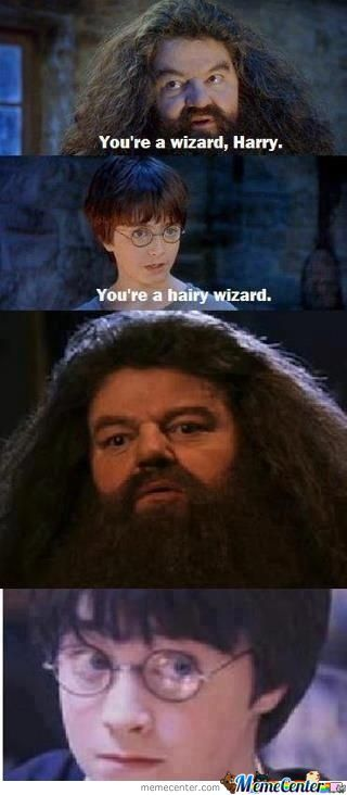 You're A Harry Wizard