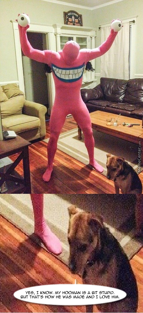 +1 For The Canine Shame