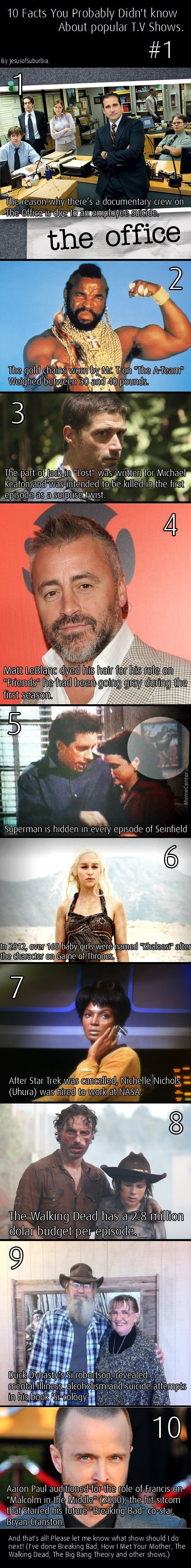 10 Facts About Popular T,v Shows