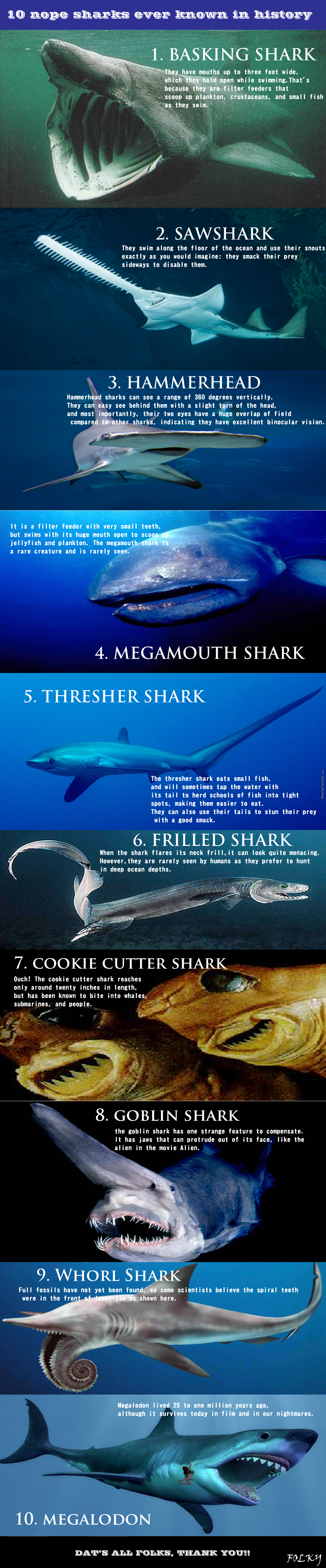 10 Nope Sharks God Ever Created