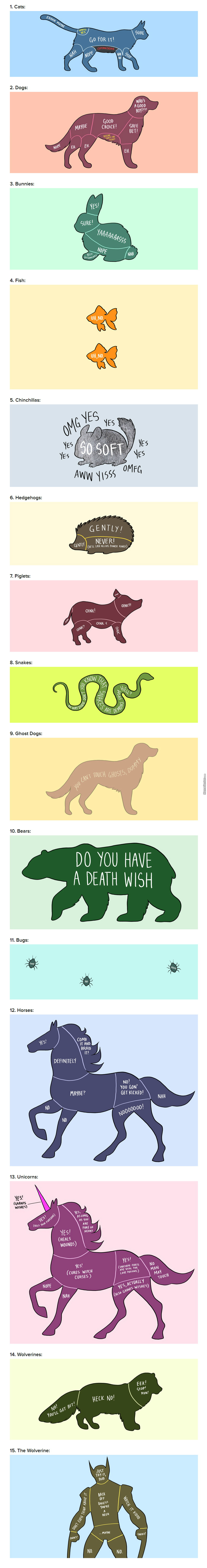 15 Charts That Perfectly Illustrate How To Properly Pet Animals