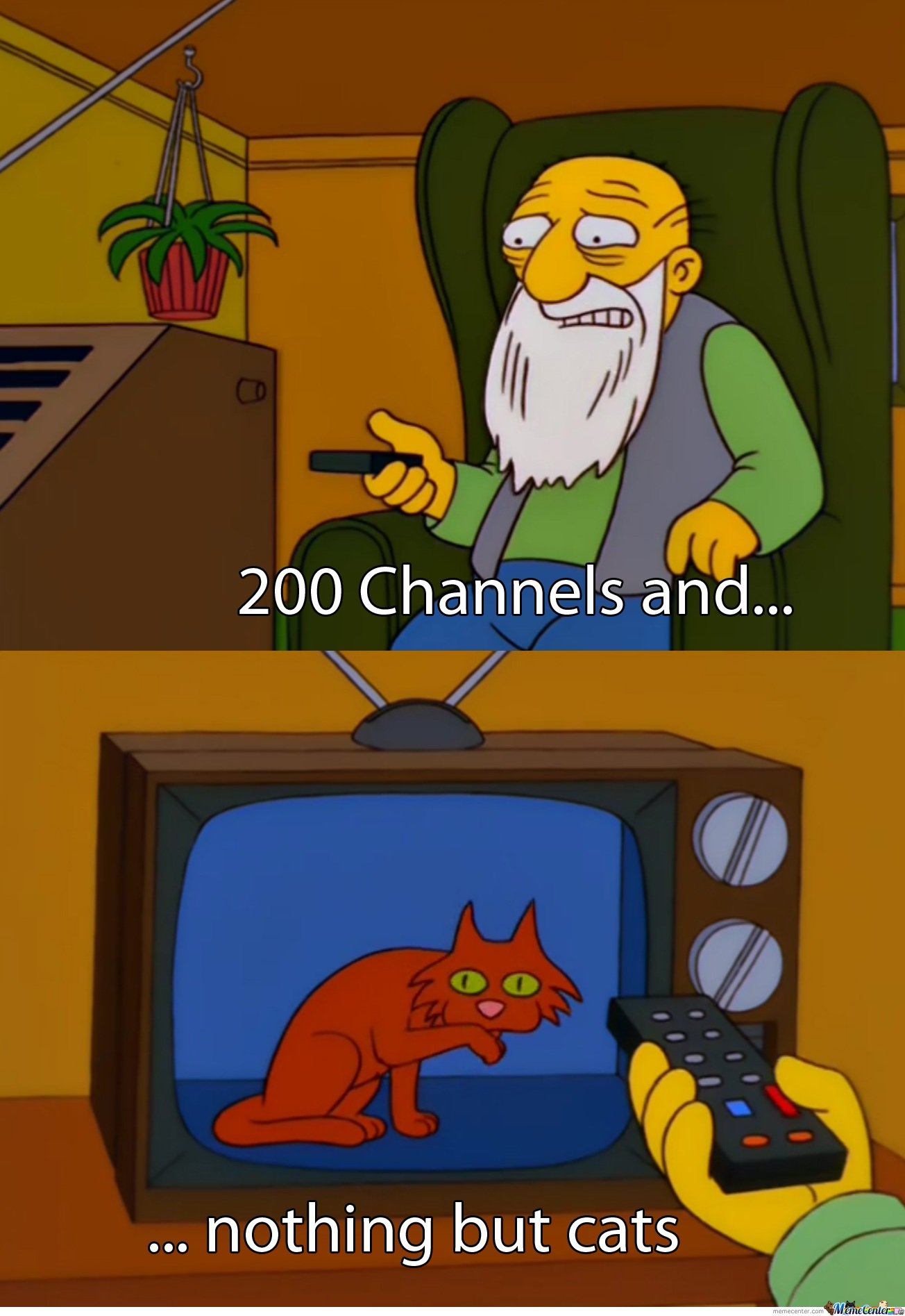 200 Channels and nothing but cats