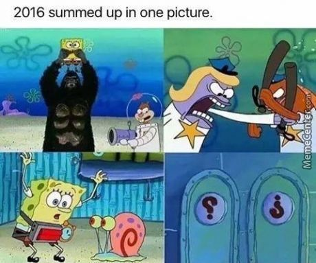 2016 Summed Up In One Picture