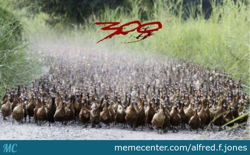 300: Duck Version