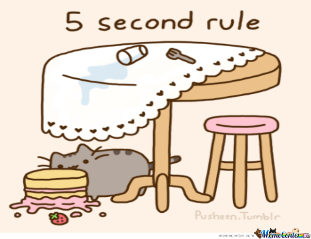 5 second rule Even though the five-second rule is a bit of folklore, it still raised important public health issues that demanded closer scrutiny, he said he cited research by the centers for disease control.